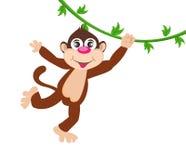 Cheerful monkey. Cartoon Stock Photos