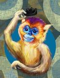 Cheerful monkey Pygathrix roxellana Royalty Free Stock Image