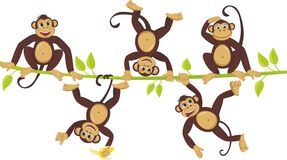 Cheerful monkeys Royalty Free Stock Image