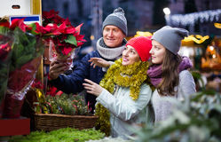 Cheerful mother, father and teen girl buying red Euphorbia and Stock Photography