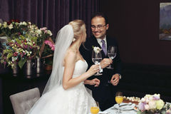 Cheerful newlywed couple drinking champagne and toasting at wedd Stock Photography