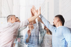Cheerful office workers giving high five each other stock photos