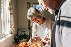 Happy senior couple making food standing in kitchen stock image