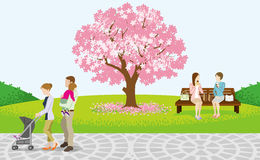 Cheerful People in Spring Park-EPS10. EPS10 - This illustration contains Multiply object (Transparency Effect). Transparency Effect is used for Family's shadow royalty free illustration