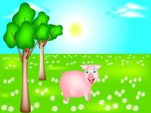 Cheerful pig in a meadow. Royalty Free Stock Image