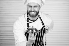 Cheerful and polite restaurant stuff. Master chef serving meal in restaurant. Chef cook in uniform standing with. Delicious dish. Handsome man in apron and cook stock photos