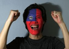 Cheerful portrait of a man with the flag of Chinese Taipei or Taiwan painted on his face on grey background. The concept of sport or nationalism. Red field royalty free stock image