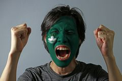 Cheerful portrait of a man with the flag of the Macau painted on his face on grey background. The concept of sport or nationalism royalty free stock images