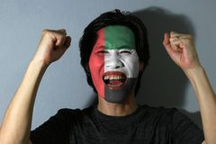 Cheerful portrait of a man with the flag of United Arab Emirates painted on his face on grey background. The concept of sport or nationalism. green white and royalty free stock images