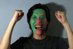 Cheerful portrait of a man with the flag of Zambia painted on his face on grey background. The concept of sport or nationalism royalty free stock photo
