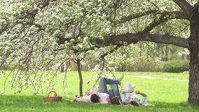 Cheerful portrait of a young family. Parents with their children lie under a blossoming apple tree. Family having fun on stock footage