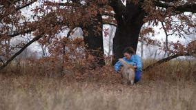 Smiling woman and dog during training outdoors stock footage