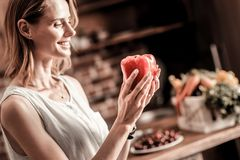 Cheerful positive woman holding red pepper. So tasty. Cheerful positive beautiful woman holding red sweet pepper and looking at it while smiling Stock Photos