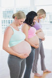 Cheerful pregnant women standing in a line smiling at bumps Royalty Free Stock Images
