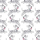 Cheerful puppy Dalmatian breed seamless pattern, cartoon style, Stock Image
