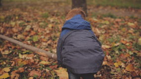 Cheerful red-haired boy playing in autumn park among the yellowing leaves stock video
