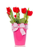 Cheerful red tulip bouquet Royalty Free Stock Photos