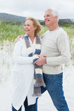 Cheerful romantic senior couple at beach Stock Photo
