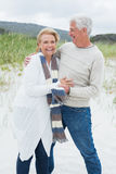 Cheerful romantic senior couple at beach Stock Image