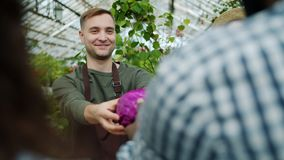 Cheerful salesman giving organic food to customer in greenhouse market. Cheerful salesman wearing apron is giving organic food to customer in greenhouse market stock video footage