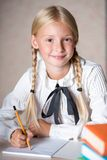 Cheerful school girl writing in notebook Royalty Free Stock Photos