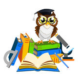 Cheerful school owl Stock Images