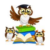 Cheerful school owl Royalty Free Stock Photos