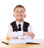 Cheerful Schoolboy Royalty Free Stock Image