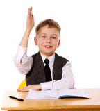 Cheerful Schoolboy Royalty Free Stock Photography