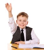 Cheerful Schoolboy Stock Photography