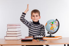 Cheerful Schoolboy ready to answer question Royalty Free Stock Images