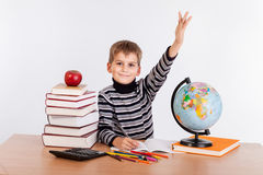 Cheerful Schoolboy ready to answer question Stock Photography
