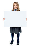 Cheerful schoolkid showcasing blank whiteboard Royalty Free Stock Photos