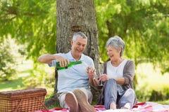 Cheerful senior couple having champagne at park Stock Photos