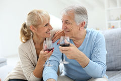 Cheerful senior couple having a glass of red wine Royalty Free Stock Image