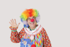 Cheerful senior male clown waving hand while looking away over gray background Royalty Free Stock Photos