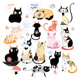 Cheerful set of cats Stock Image