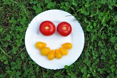 Cheerful smiley from fresh tomato on a white plate. Stock Images