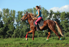 Cheerful smiling girl galloping horse. Young female riding on saddle horse Royalty Free Stock Images