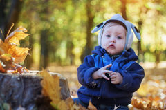 Cheerful smiling little boy in the autumn park Royalty Free Stock Image