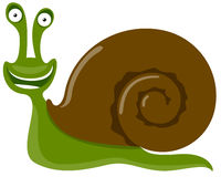 Cheerful snail Royalty Free Stock Photo