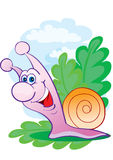 Cheerful snail Royalty Free Stock Photos