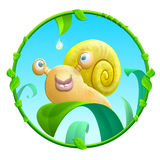Cheerful snail Royalty Free Stock Photography