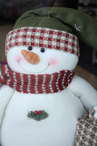 Cheerful Snowman Royalty Free Stock Image