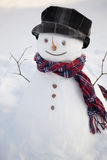 Cheerful snowman Royalty Free Stock Photography