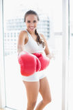 Cheerful sporty brunette wearing red boxing gloves Stock Photography