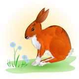 Cheerful spring bunny vector Stock Images
