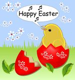 Cheerful spring easter theme with cute yellow chicken sitting in painted shell egg in grass with white flowers Stock Images