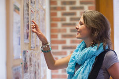 Cheerful student pointing at notice board Royalty Free Stock Photo