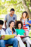 Cheerful students studying Stock Image